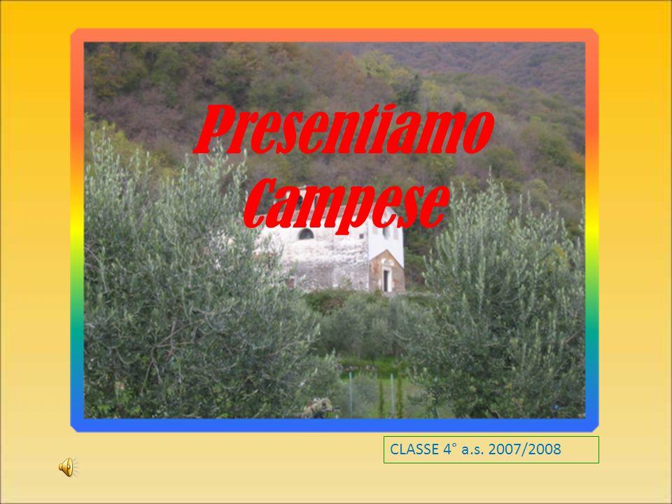 Presentiamo Campese CLASSE 4° a.s. 2007/2008