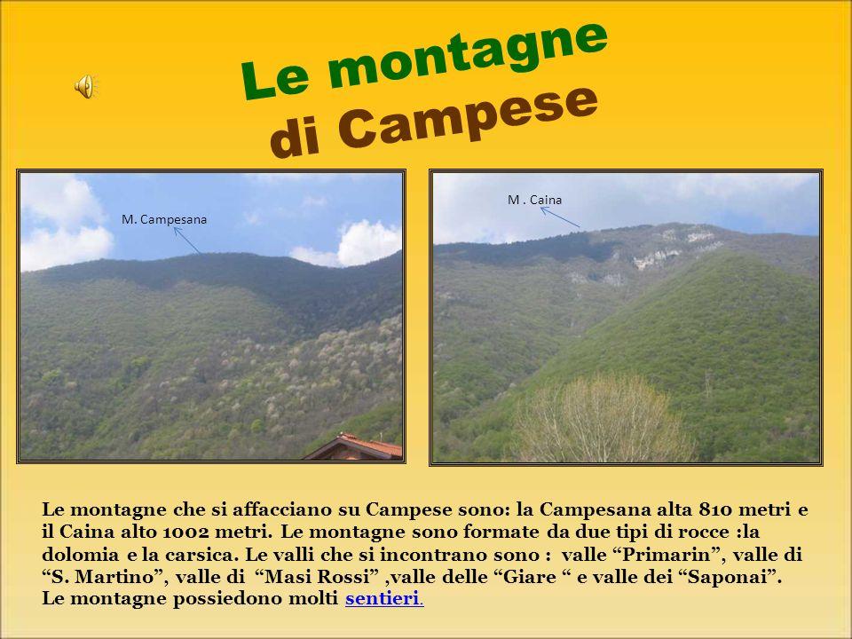 Le montagne di Campese M . Caina. M. Campesana.