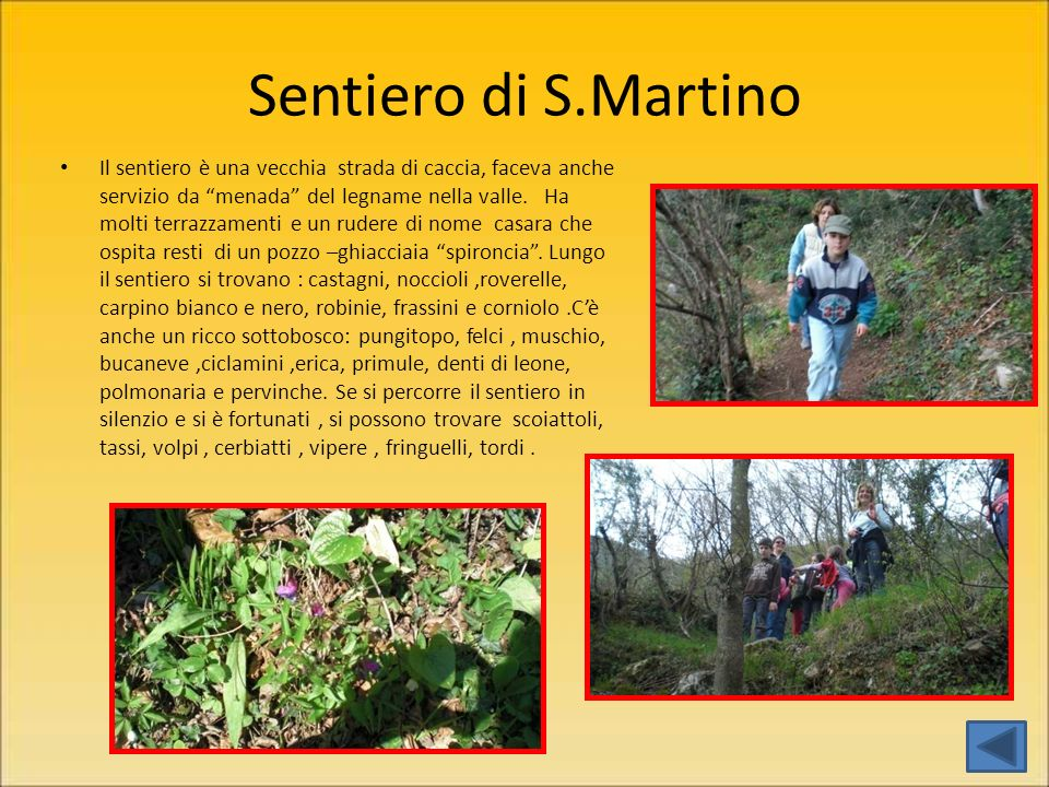 Sentiero di S.Martino