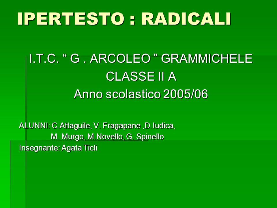 I.T.C. G . ARCOLEO GRAMMICHELE