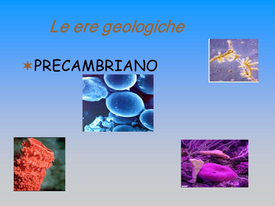 Le ere geologiche PRECAMBRIANO