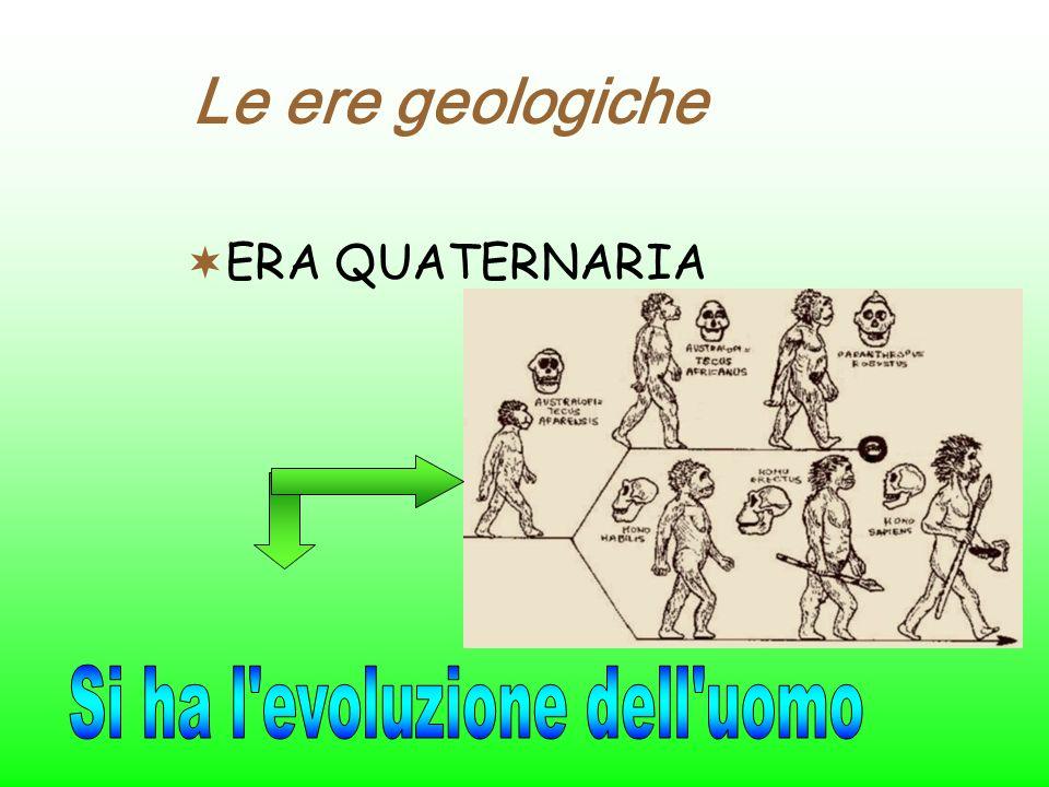 Si ha l evoluzione dell uomo