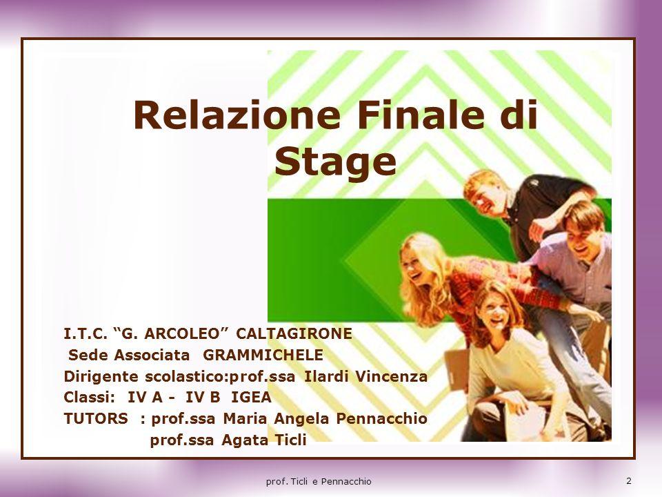Relazione Finale di Stage