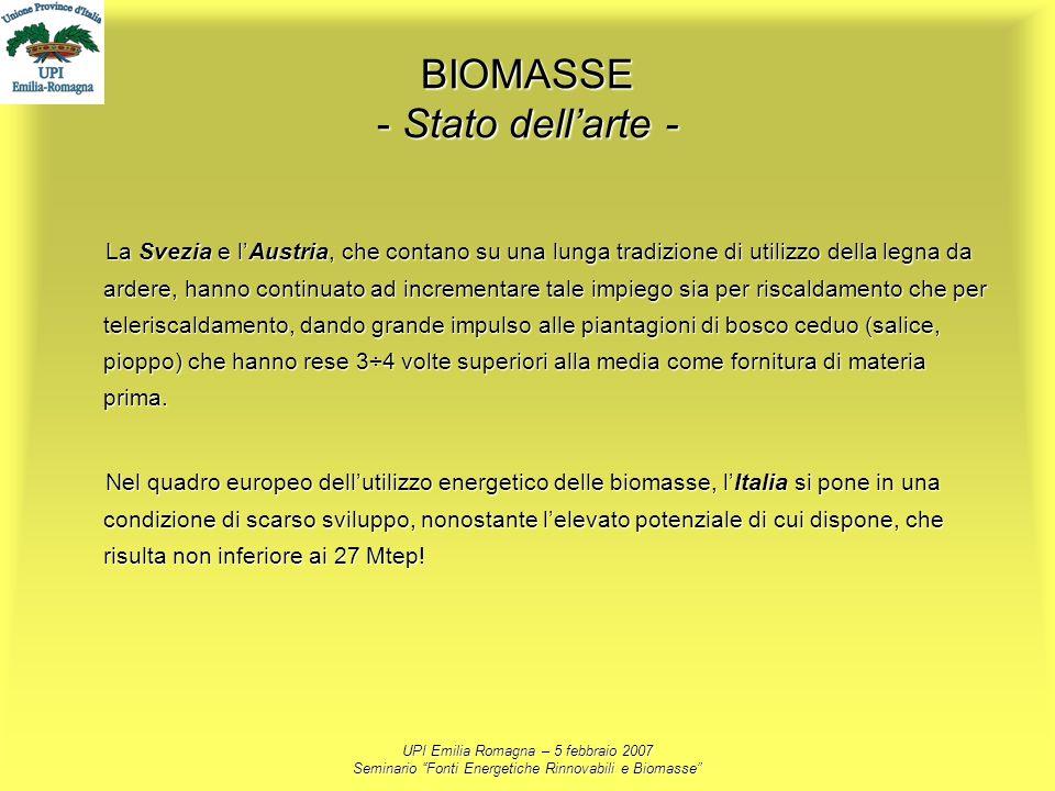 BIOMASSE - Stato dell'arte -