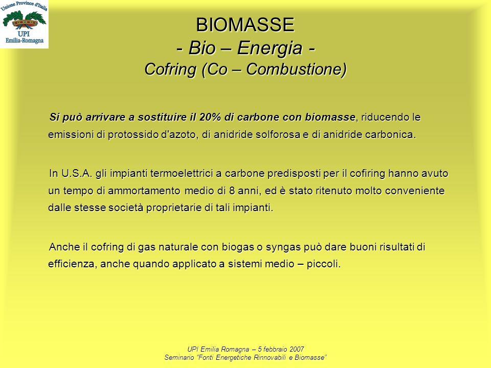 BIOMASSE - Bio – Energia - Cofring (Co – Combustione)