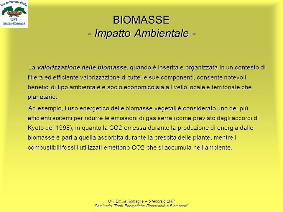 BIOMASSE - Impatto Ambientale -