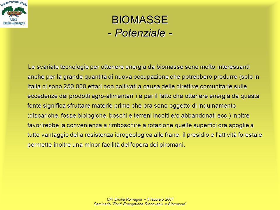 BIOMASSE - Potenziale -