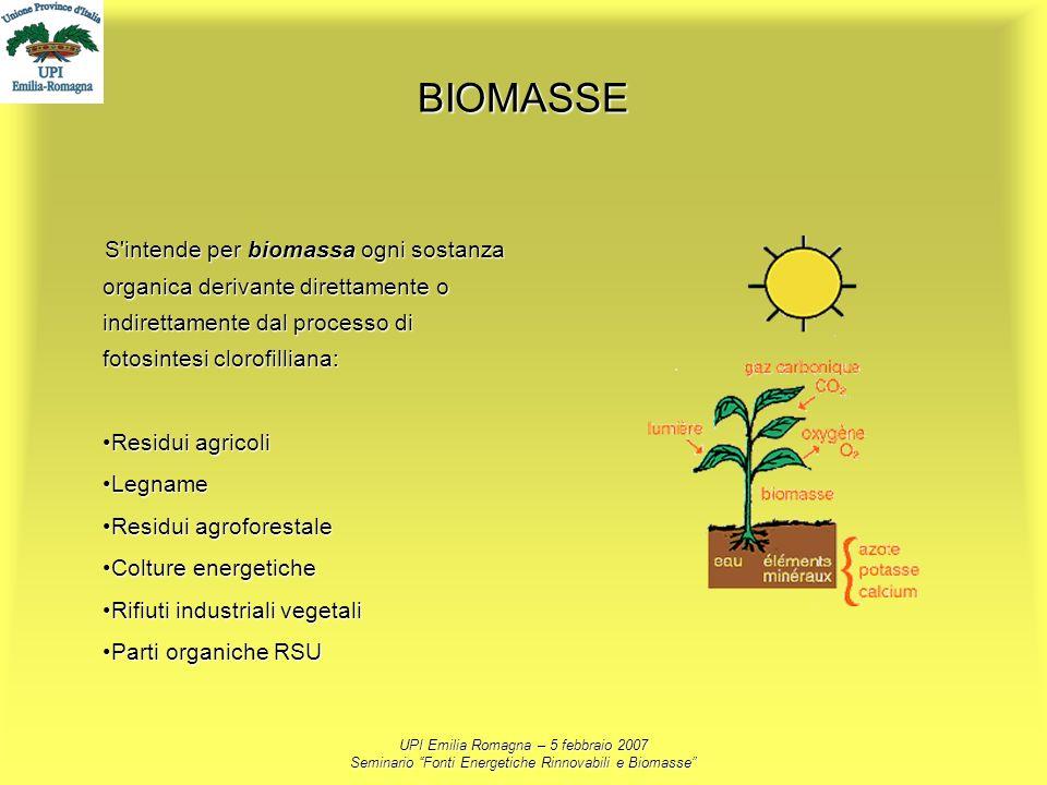BIOMASSE S intende per biomassa ogni sostanza organica derivante direttamente o indirettamente dal processo di fotosintesi clorofilliana: