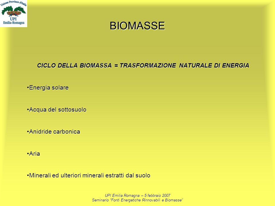 CICLO DELLA BIOMASSA = TRASFORMAZIONE NATURALE DI ENERGIA