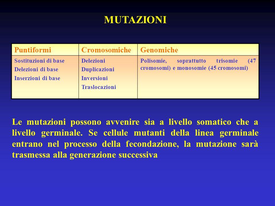 MUTAZIONI Puntiformi. Cromosomiche. Genomiche. Sostituzioni di base. Delezioni di base. Inserzioni di base.