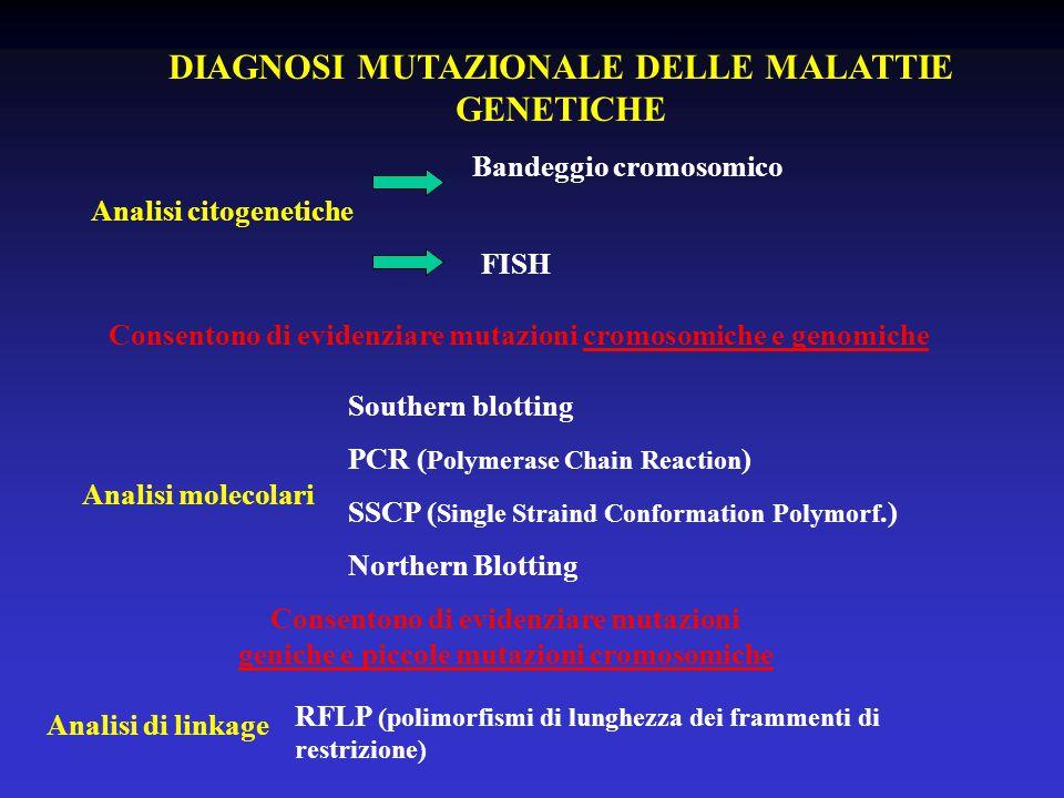 DIAGNOSI MUTAZIONALE DELLE MALATTIE GENETICHE