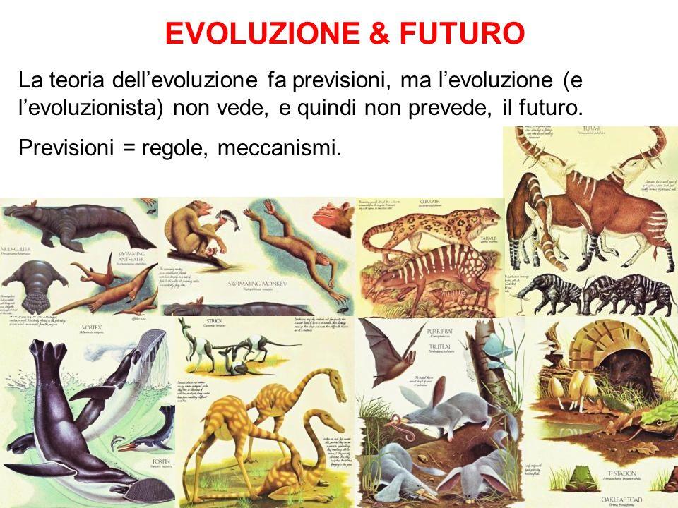 Evoluzione & FUTURO La teoria dell'evoluzione fa previsioni, ma l'evoluzione (e l'evoluzionista) non vede, e quindi non prevede, il futuro.