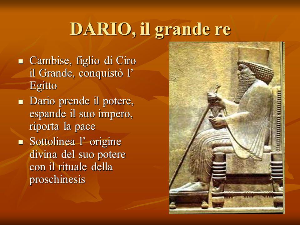 DARIO, il grande re Cambise, figlio di Ciro il Grande, conquistò l' Egitto. Dario prende il potere, espande il suo impero, riporta la pace.