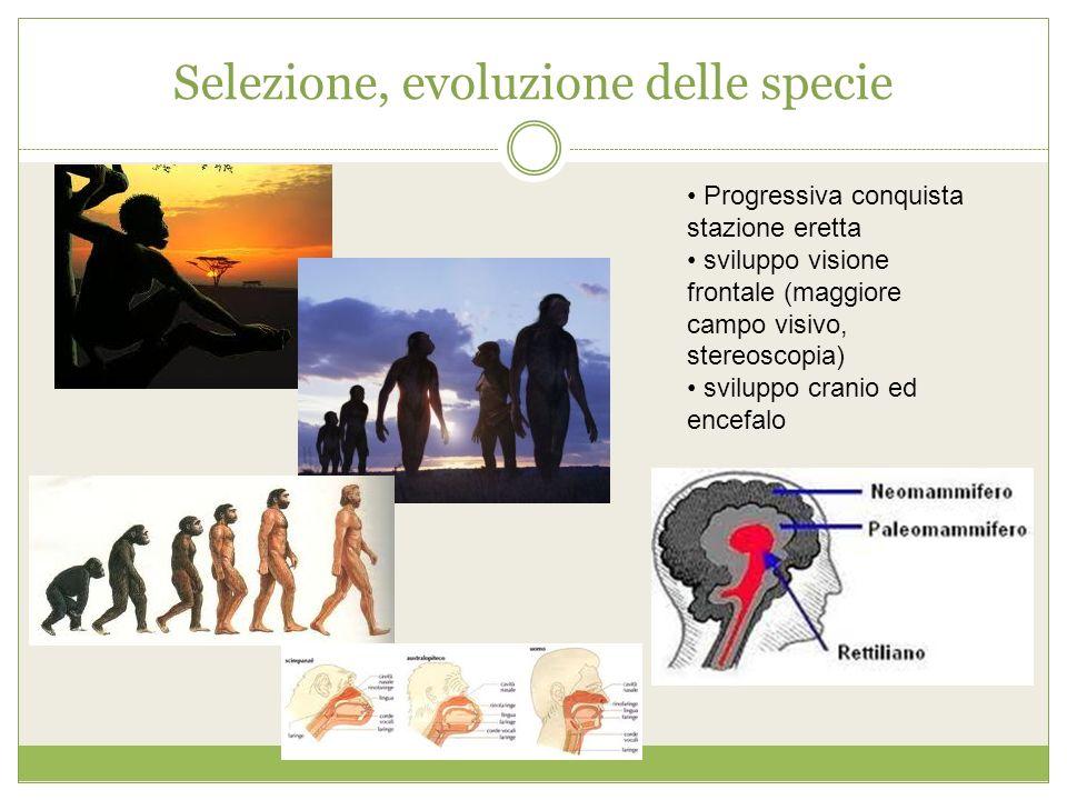 Selezione, evoluzione delle specie