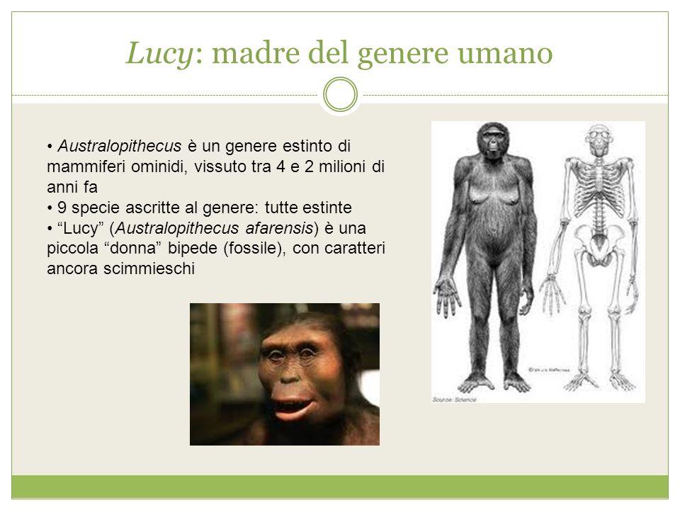 Lucy: madre del genere umano