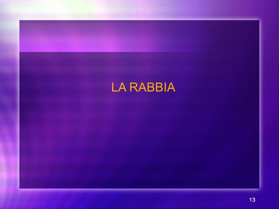 LA RABBIA