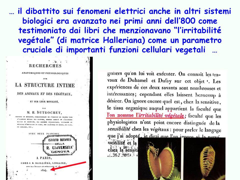 … il dibattito sui fenomeni elettrici anche in altri sistemi biologici era avanzato nei primi anni dell'800 come testimoniato dai libri che menzionavano l'irritabilité vegétale (di matrice Halleriana) come un parametro cruciale di importanti funzioni cellulari vegetali …
