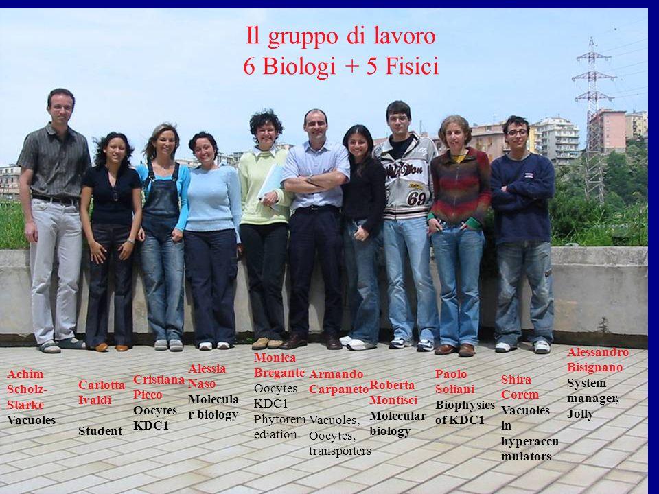 Il gruppo di lavoro 6 Biologi + 5 Fisici