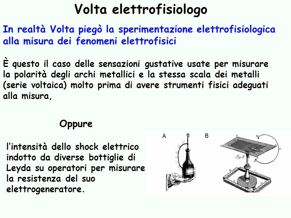 Volta elettrofisiologo
