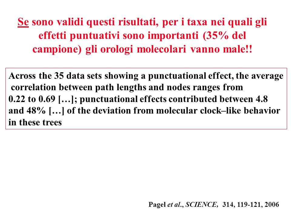 Se sono validi questi risultati, per i taxa nei quali gli effetti puntuativi sono importanti (35% del campione) gli orologi molecolari vanno male!!