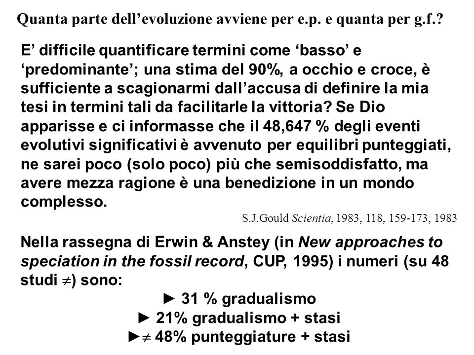 ► 48% punteggiature + stasi