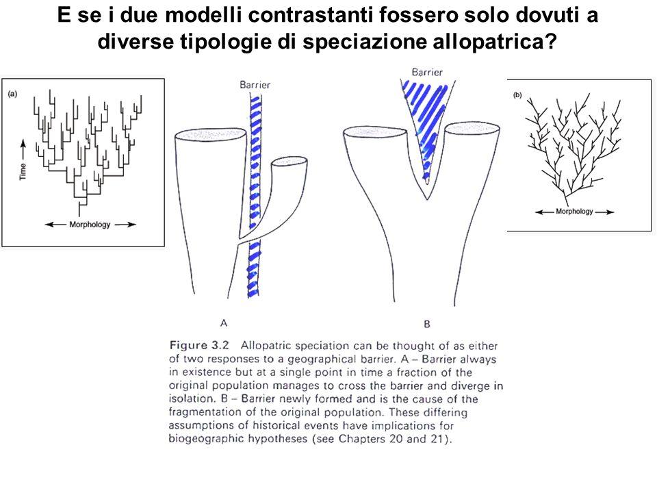 E se i due modelli contrastanti fossero solo dovuti a diverse tipologie di speciazione allopatrica