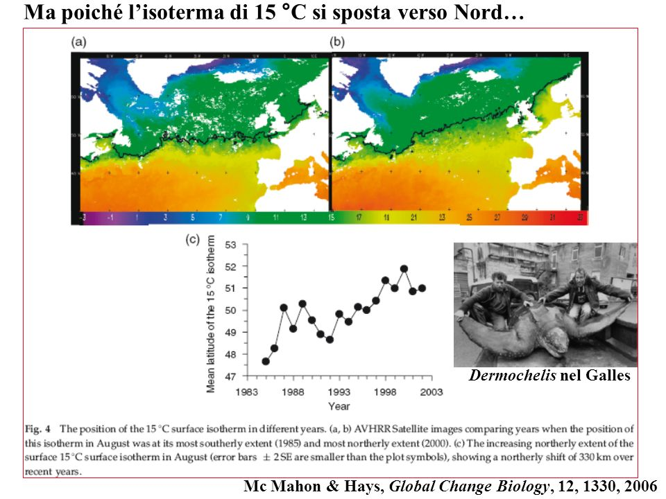 Ma poiché l'isoterma di 15 °C si sposta verso Nord…