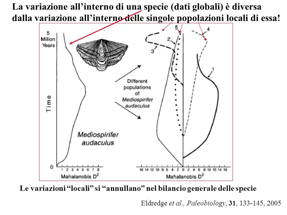 La variazione all'interno di una specie (dati globali) è diversa dalla variazione all'interno delle singole popolazioni locali di essa!