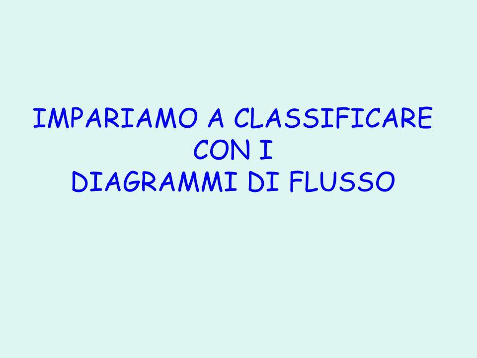 IMPARIAMO A CLASSIFICARE CON I DIAGRAMMI DI FLUSSO
