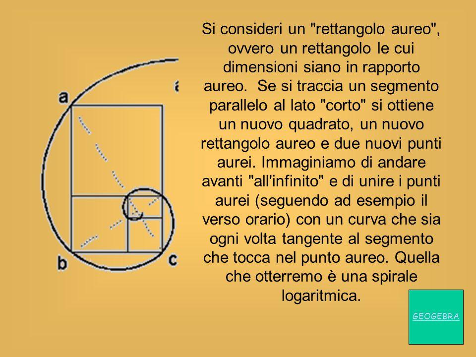 Si consideri un rettangolo aureo , ovvero un rettangolo le cui dimensioni siano in rapporto aureo. Se si traccia un segmento parallelo al lato corto si ottiene un nuovo quadrato, un nuovo rettangolo aureo e due nuovi punti aurei. Immaginiamo di andare avanti all infinito e di unire i punti aurei (seguendo ad esempio il verso orario) con un curva che sia ogni volta tangente al segmento che tocca nel punto aureo. Quella che otterremo è una spirale logaritmica.