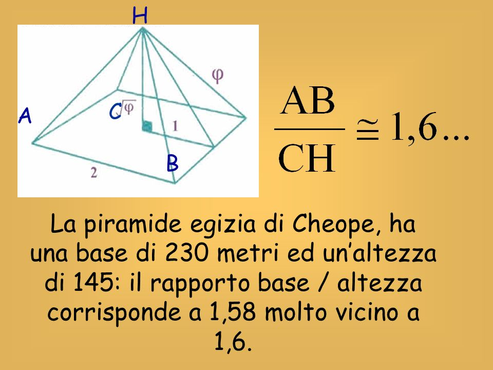 H C. A. B.