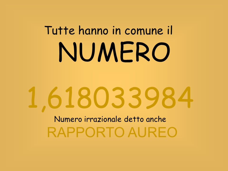 1,618033984 RAPPORTO AUREO Tutte hanno in comune il NUMERO