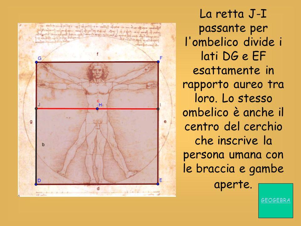 La retta J-I passante per l ombelico divide i lati DG e EF esattamente in rapporto aureo tra loro. Lo stesso ombelico è anche il centro del cerchio che inscrive la persona umana con le braccia e gambe aperte.