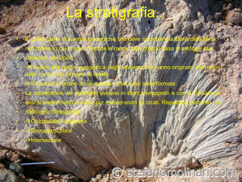 La stratigrafia..È quella parte di scienze geologiche che deve ricostruire la storia della terra,