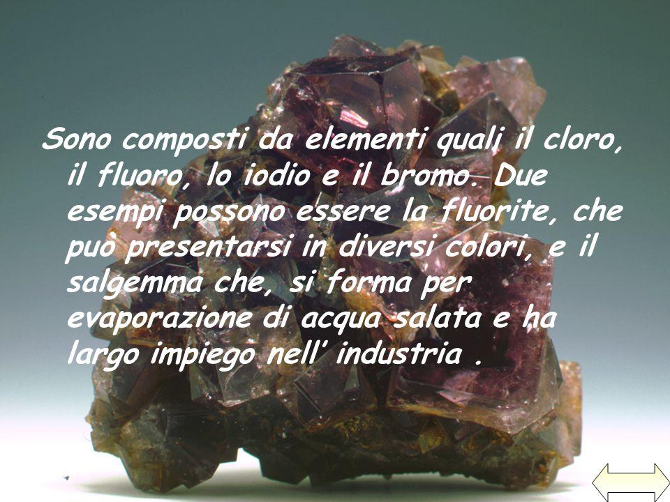 Sono composti da elementi quali il cloro, il fluoro, lo iodio e il bromo.