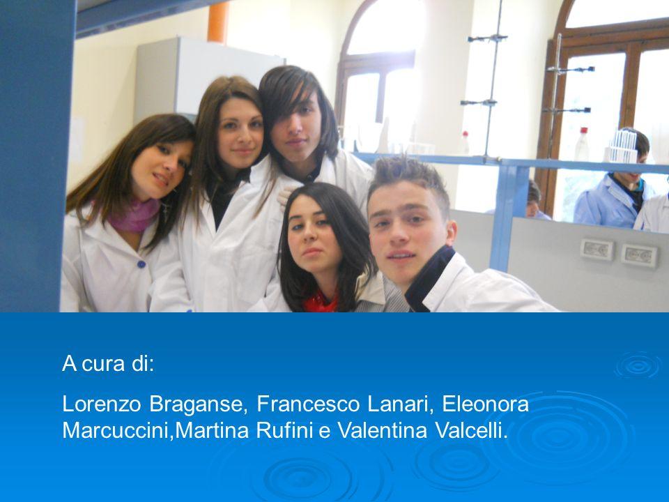 A cura di: Lorenzo Braganse, Francesco Lanari, Eleonora Marcuccini,Martina Rufini e Valentina Valcelli.