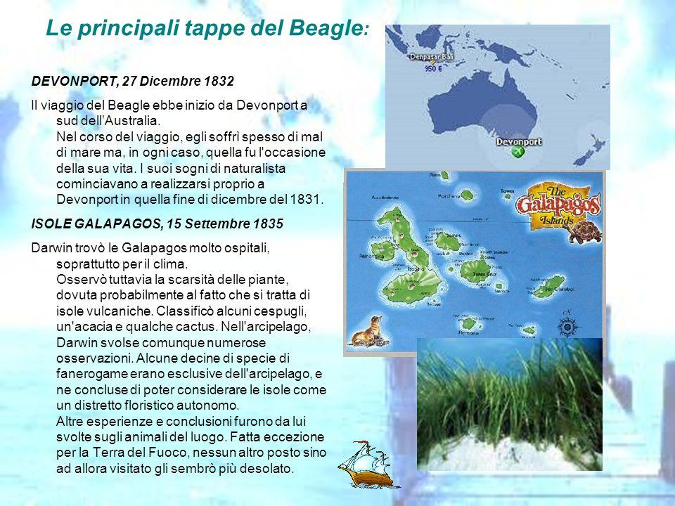 Le principali tappe del Beagle: