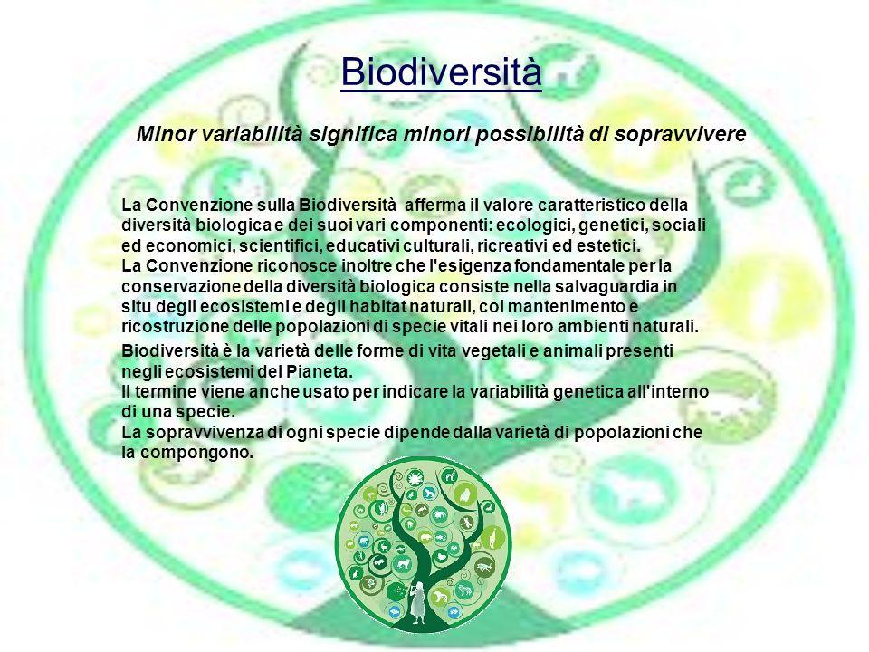 Biodiversità Minor variabilità significa minori possibilità di sopravvivere