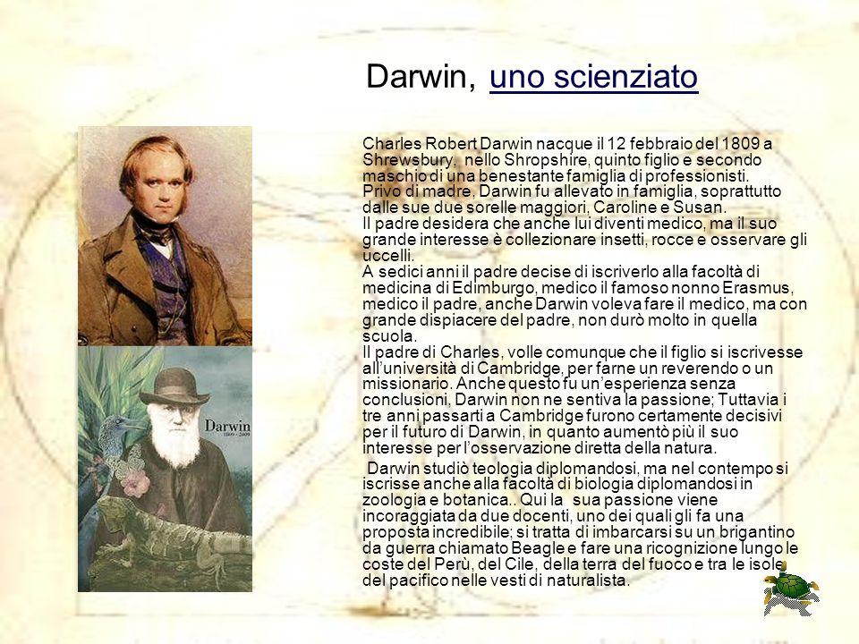 Darwin, uno scienziato Charles Robert Darwin nacque il 12 febbraio del 1809 a Shrewsbury, nello Shropshire, quinto figlio e secondo maschio di una benestante famiglia di professionisti. Privo di madre, Darwin fu allevato in famiglia, soprattutto dalle sue due sorelle maggiori, Caroline e Susan. Il padre desidera che anche lui diventi medico, ma il suo grande interesse è collezionare insetti, rocce e osservare gli uccelli. A sedici anni il padre decise di iscriverlo alla facoltà di medicina di Edimburgo, medico il famoso nonno Erasmus, medico il padre, anche Darwin voleva fare il medico, ma con grande dispiacere del padre, non durò molto in quella scuola. Il padre di Charles, volle comunque che il figlio si iscrivesse all'università di Cambridge, per farne un reverendo o un missionario. Anche questo fu un'esperienza senza conclusioni, Darwin non ne sentiva la passione; Tuttavia i tre anni passarti a Cambridge furono certamente decisivi per il futuro di Darwin, in quanto aumentò più il suo interesse per l'osservazione diretta della natura.