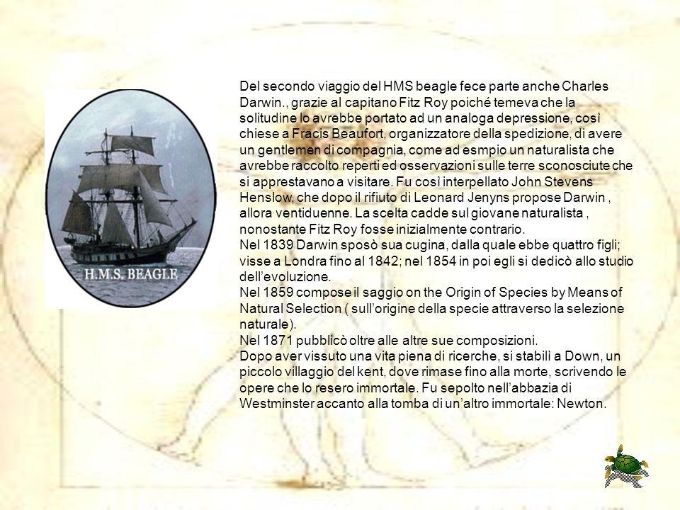 Del secondo viaggio del HMS beagle fece parte anche Charles Darwin