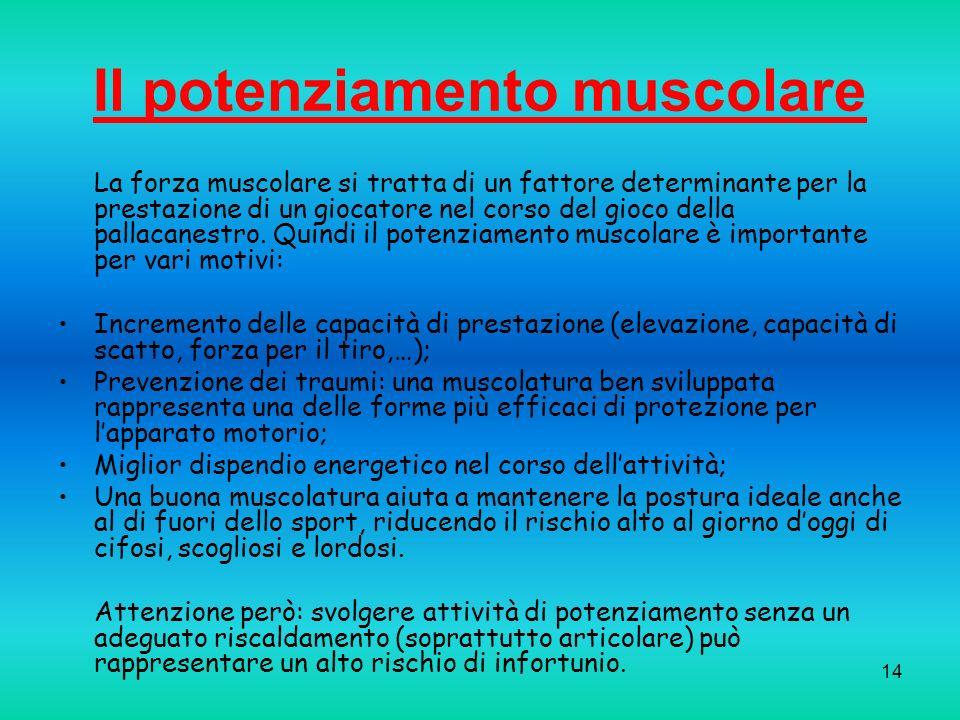 Il potenziamento muscolare