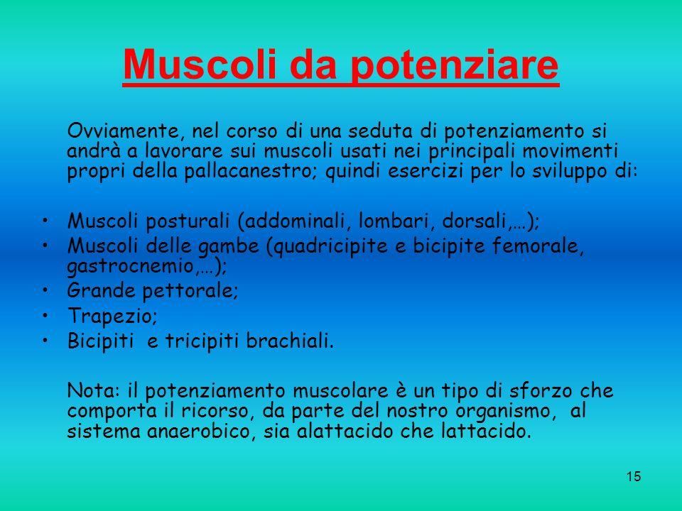 Muscoli da potenziare