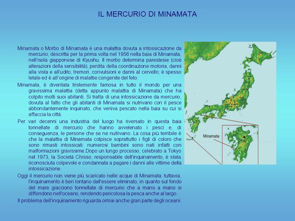 IL MERCURIO DI MINAMATA