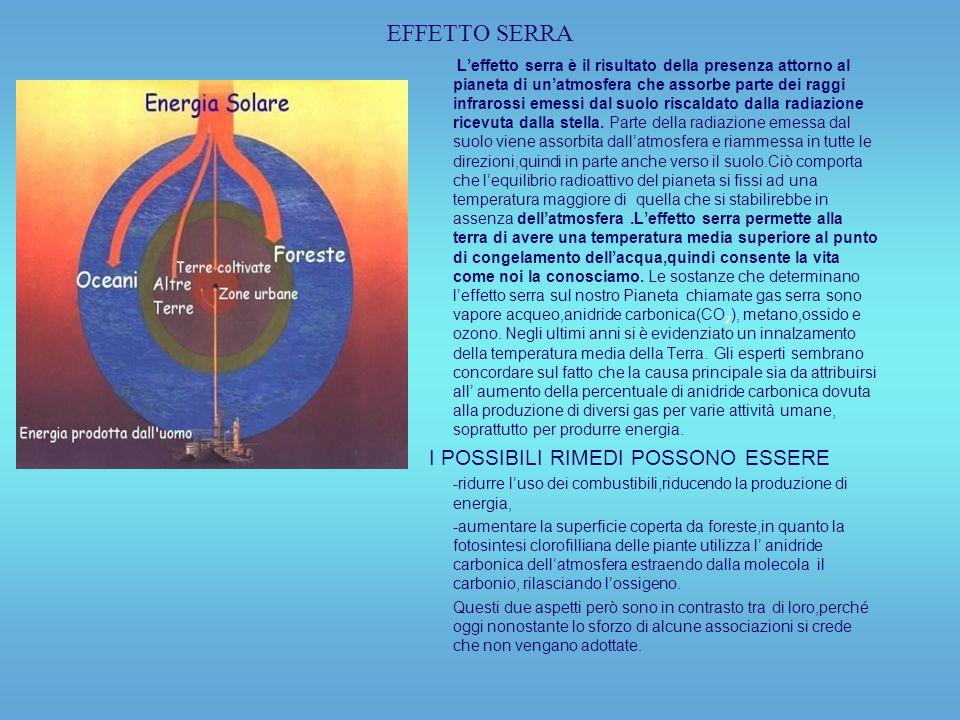 EFFETTO SERRA I POSSIBILI RIMEDI POSSONO ESSERE