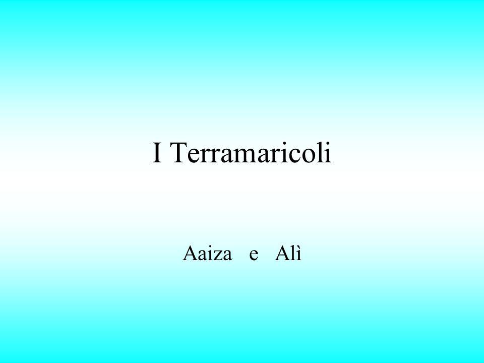 I Terramaricoli Aaiza e Alì