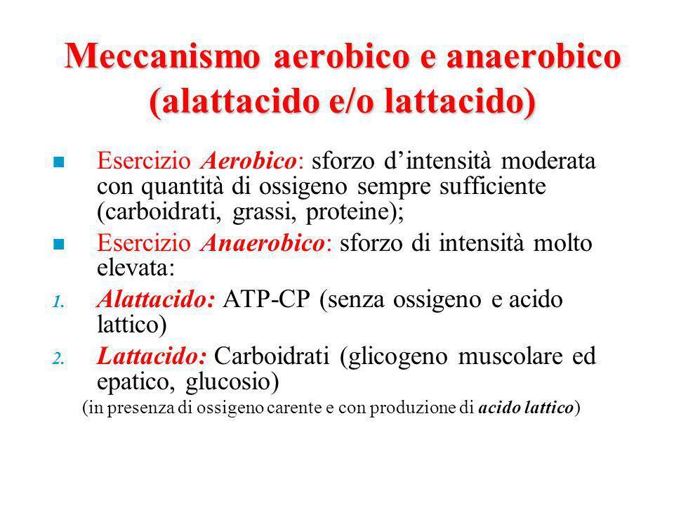 Meccanismo aerobico e anaerobico (alattacido e/o lattacido)