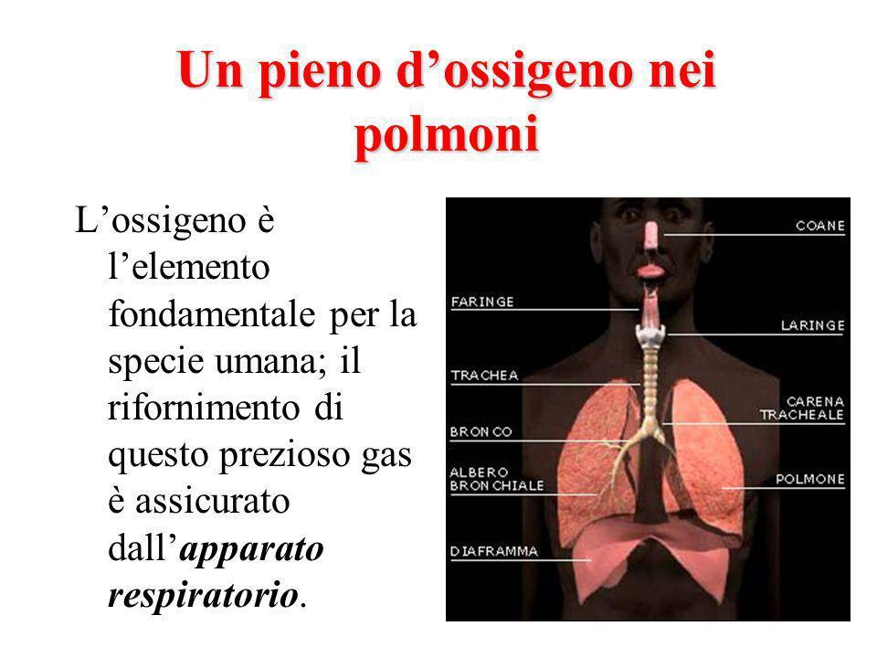 Un pieno d'ossigeno nei polmoni