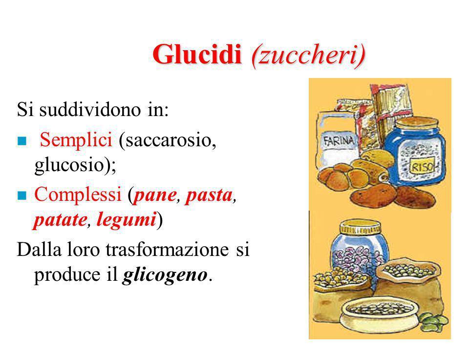 Glucidi (zuccheri) Si suddividono in: Semplici (saccarosio, glucosio);