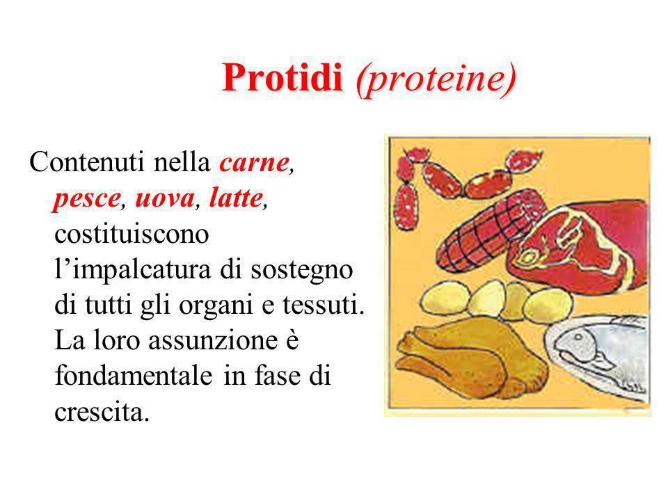 Protidi (proteine)