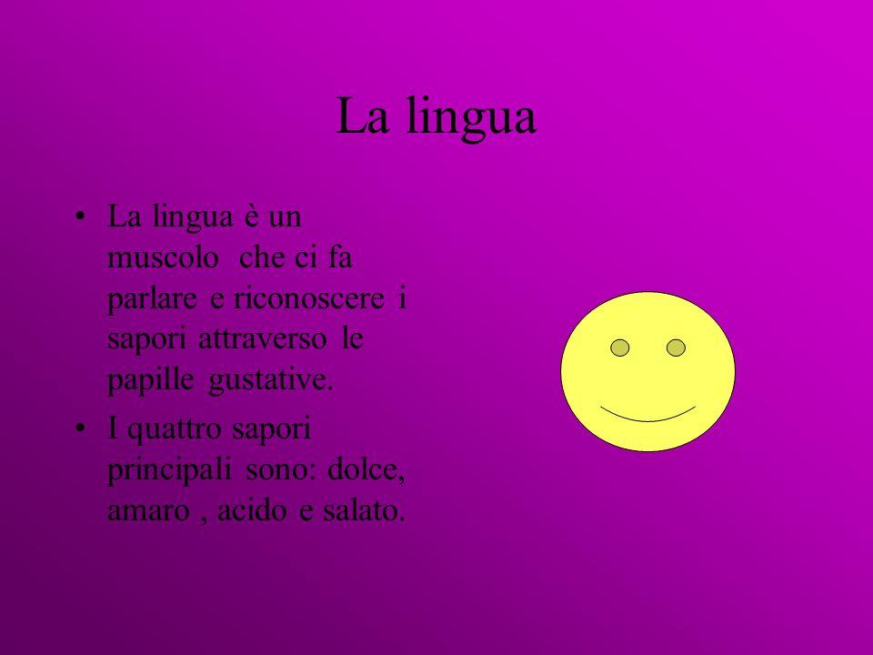 La lingua La lingua è un muscolo che ci fa parlare e riconoscere i sapori attraverso le papille gustative.